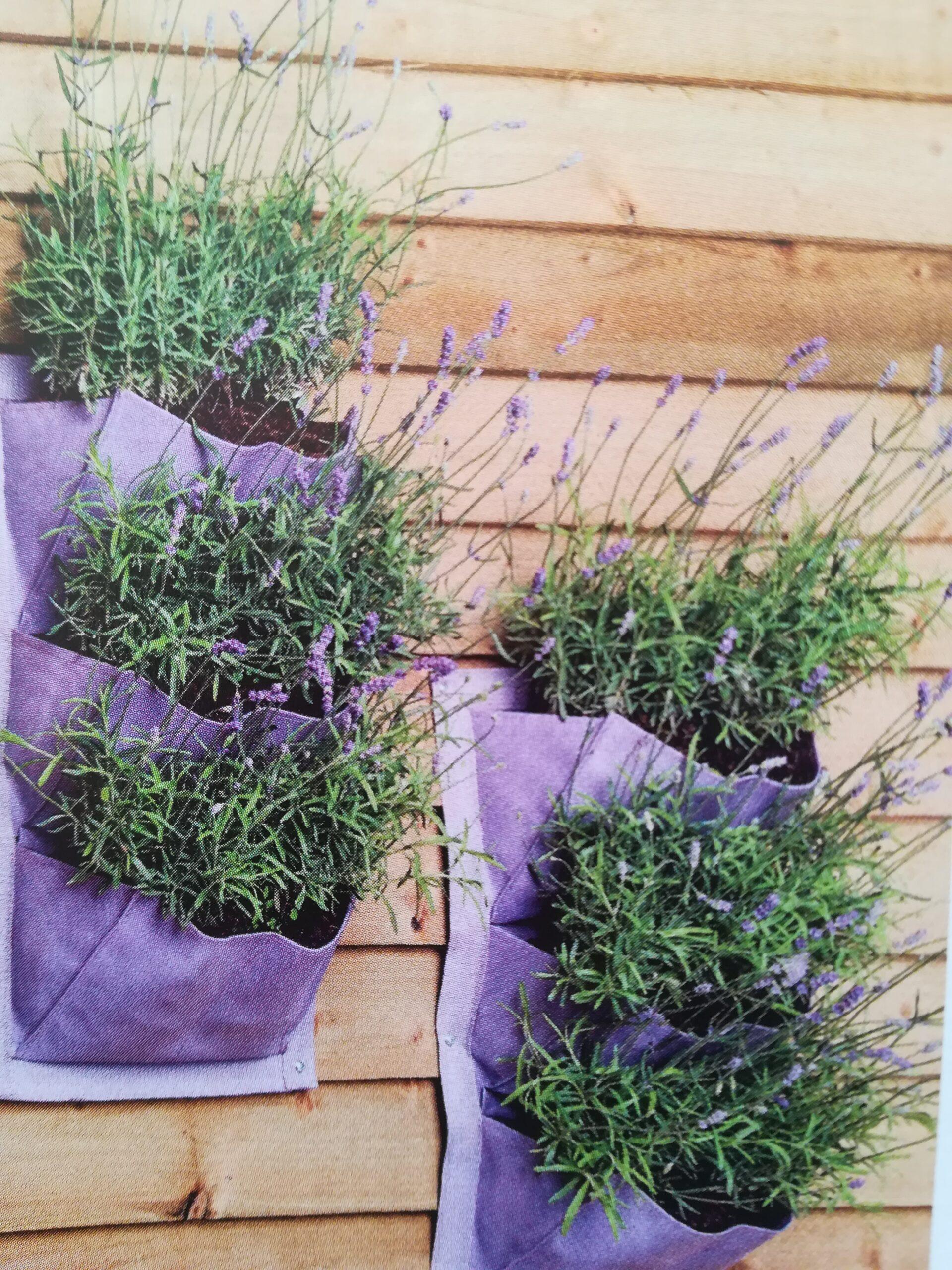 Pflanzentaschen