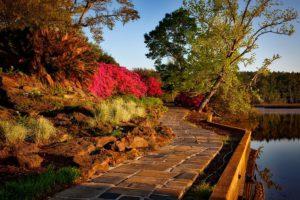 Herbstputz für den Garten